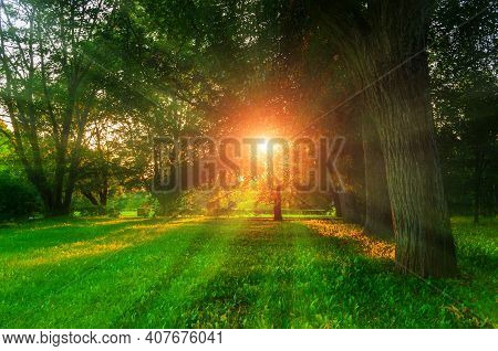 Summer city landscape,summer city park and deciduous green summer trees lit by sunset light,summer city view,summer city landscape,city summer,city nature,sunset in the city