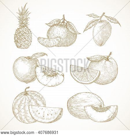 Hand Drawn Fruits Vector Illustrations Collection. Pineapple, Mango, Tangerines, Peaches And Waterme