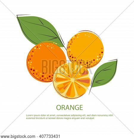 Sunny Juicy Oranges With Green Leafs. Composition Of Whole And Cut Oranges.