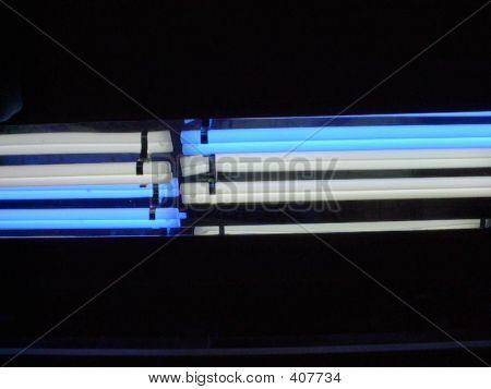 Power Compact Light