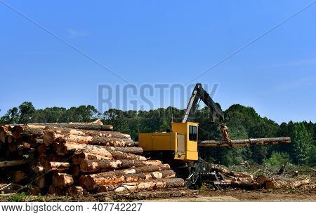 Log Loader Lifts Heavy Logs And Stacks Them Ready For Transport.  Long Arm Has Log Loaded Inside Cla