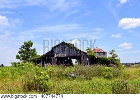 Overgrown Wooden Barn In Arkansas