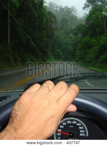 Driving In The Middle Of A Forest