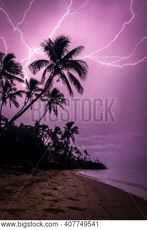 Chain Lightning On A Beach With Palm Tree Foreground. Purple Illuminated Sky And Portrait Profile. P