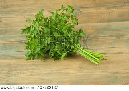 Fresh bunch green parsley bunch on wood background. Top view, flat lay. Floral design element. Healthy eating and dieting concept