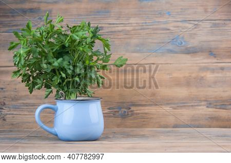 Fresh bunch green parsley bunch in blue bowl on wooden table background. Floral design element. Healthy eating and dieting concept