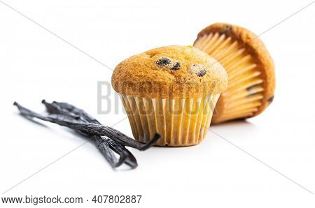 Vanilla muffins and vanilla pods. Sweet cupcakes isolated on white background.