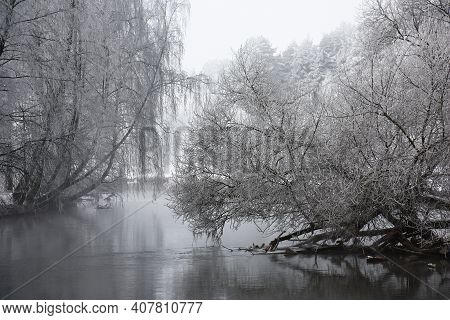 Winter Morning In A Haze. Trees On River Banks In Silvery Hoarfrost. Magic Natural Picture.