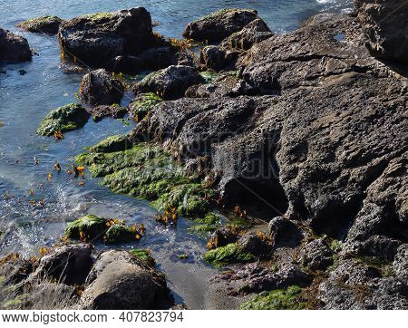 Landscape With Rocks During Low Tide In Point Lobos State Natural Reserve. California, Usa.