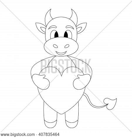 Bull. Little Goby. A Baby Cow Holds A Heart In Its Paws. Calf. Sketch. Vector Illustration. Outline