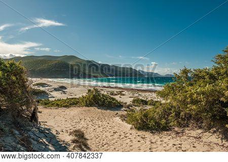 Ostriconi Beach And Maquis Covered Coastline In The Balagne Region Of Corsica.