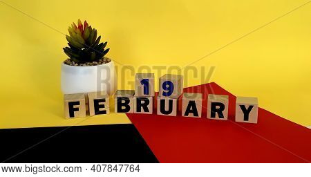 February 19 On Wooden Cubes On A Multicolored Yellow Red Black Background.calendar For February .