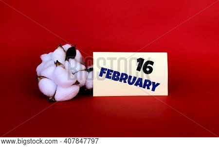 February 16 On A Yellow Sticker.next To It Is Cotton On A Red Background .last Month Of Winter.calen