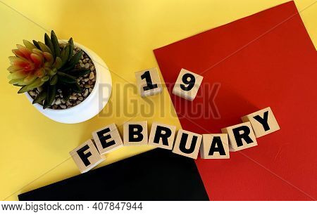 February 19 On Wooden Cubes .next To It Is A Pot With A Cactus On A Multicolored Background.calendar