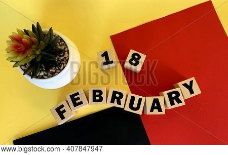 February 18 On Wooden Cubes .next To It Is A Pot With A Cactus On A Multicolored Background.calendar