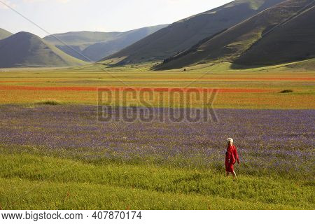 Norcia (pg), Italy - May 25, 2015: A Woman Walk In The Fields Around Castelluccio Di Norcia, Highlan