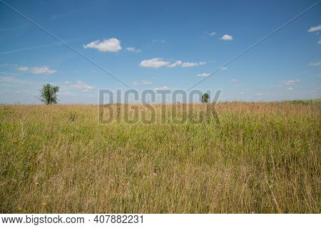 Steppe Landscape In Late Summer. Front Focus