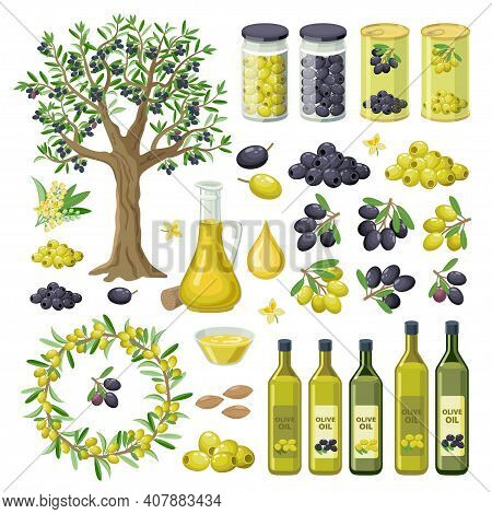 Large Collection Of Olives Food, Products, Olive Oil Bottles, Olive Tree, Groups Of Black And Green
