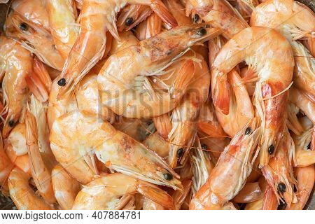 Boiled Shrimp Close Up. Cooked Seafood Delicacy.