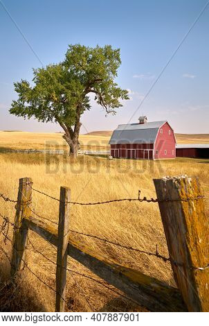 Red Barn Tree And Fence Vertical. A Bright Red Barn On A Hill In The Sunshine. Washington State, Usa