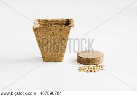 Pot And Tablet With Earth And Soil. Gardening At Home. Growing Food On Windowsill. Step By Step Spri