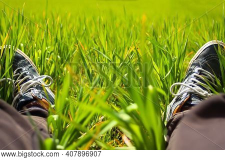 Feet Grass. Feet In Sneakers In Green Grass. Relaxing Time. Restful Moment. Healthy Lifestyle. Fresh