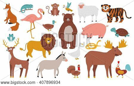 Cute Animals. Wood, Farm And Jungle Animals, Fox, Lion, Bear, Elk, Deer, Tiger And Ship. Wild Forest