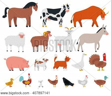 Farm Animals. Livestock And Cute Pets, Horse, Cow, Bull, Goat, Dog, Goose And Pig. Village Domestic