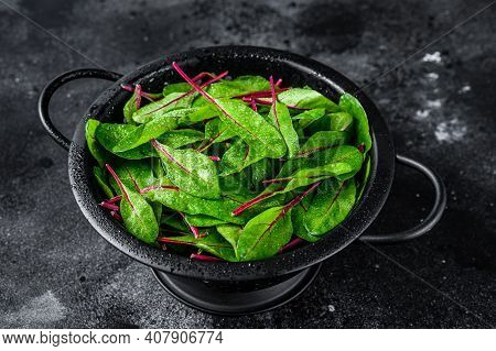 Fresh Green Chard Mangold Leaves In Colander. Black Background. Top View
