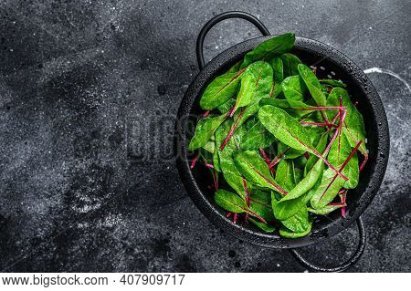 Fresh Green Chard Mangold Leaves In Colander. Black Background. Top View. Copy Space