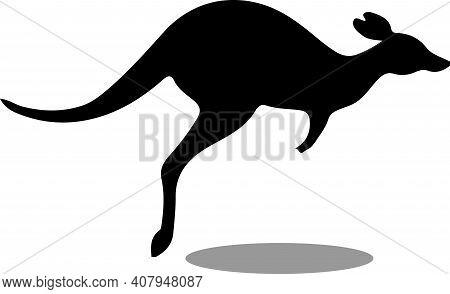 Kangaroo Vector Illustration Isolated On Background , Wilderness, Wildlife, Yellow