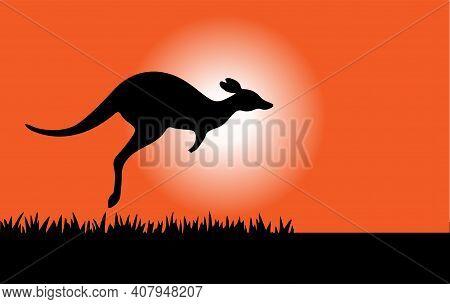 Kangaroo Vector Illustration Isolated On Background , Symbol, Territory, Tourism