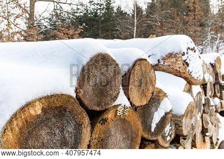 Pile Of Firewood In Winter. Many Chopped Logs. Pile Of Firewood Covered In Snow. Firewood Under The