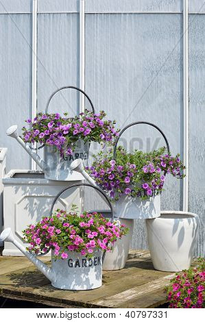 Watering cans with flowers