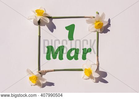March 1th. Day 1 Of Month , Calendar Date. Frame From Flowers Of A Narcissus On A Light Background,