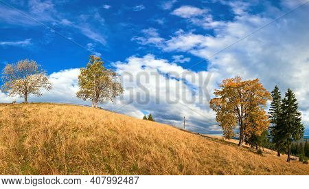 Autumn Mountain Hill With Colorful Trees (carpathians, Ukraine).