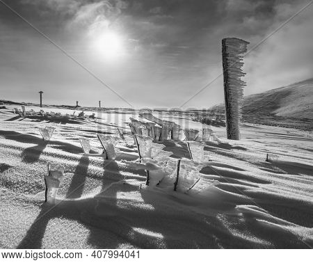 Grayscale. Snow Covered Pointer And Bushes Near Path On Snowy Mountain Plateau And Sunshine In Sky.