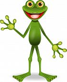 standing very cheerful frog with big eyes poster