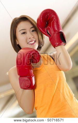 Lady Boxer
