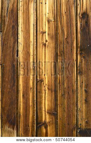 Knots And Nails Wood