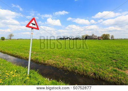 Cow warning sign in a dutch landscape on a sunny day poster