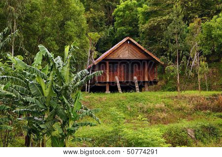 House On Stilts Locate Lonely Among Nature Scene