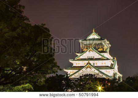 Osaka Castle View At Night
