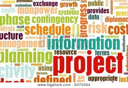 Gestione del progetto