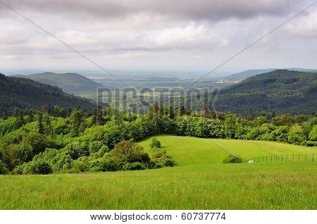 Nature In The Village Vysoka, Slovakia