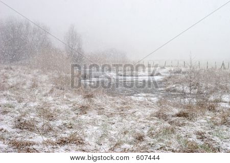 Ruhr Valley Meadows During Snowfall