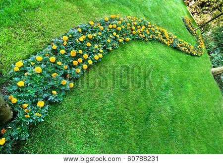 Pretty Manicured Flower Garden With Marygolds