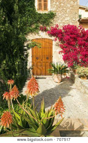 Spanish Garden A
