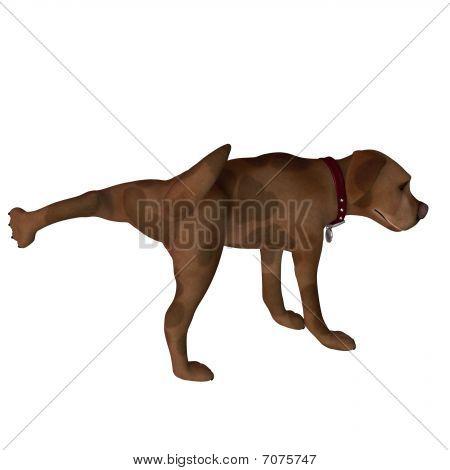 Cartoon Dog - Leg Lift