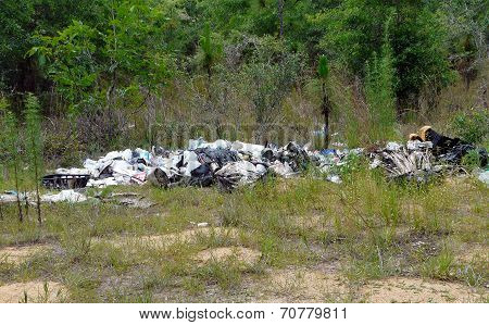 Garbage Dump In Nature